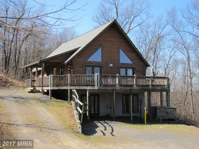 654 Sunset Ridge Drive, McHenry, MD 21541 (#GA9946367) :: Pearson Smith Realty