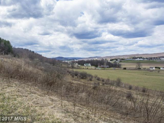 Klotz Farm Drive, McHenry, MD 21541 (#GA9958770) :: Pearson Smith Realty
