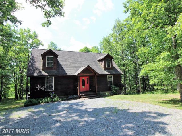 118 Sears Lane, Swanton, MD 21561 (#GA9981950) :: Keller Williams Pat Hiban Real Estate Group