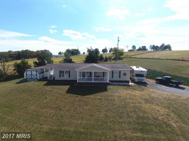 120 Dewey Drive, Maysville, WV 26833 (#GT10061962) :: Pearson Smith Realty