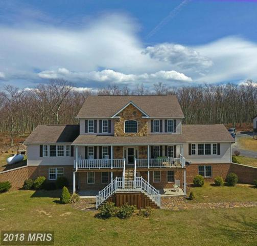 563 Endless Mountain Road, Maysville, WV 26833 (#GT10204635) :: Hill Crest Realty
