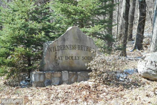 Wilderness Drive, Mount Storm, WV 26739 (#GT9688002) :: LoCoMusings
