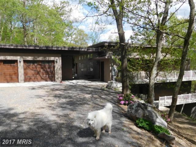 2758 Preserve Road, Maysville, WV 26833 (#GT9939379) :: Pearson Smith Realty
