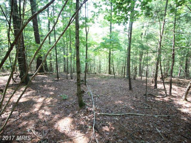 North Mt. Rd., Wardensville, WV 26851 (#HD10010594) :: Pearson Smith Realty
