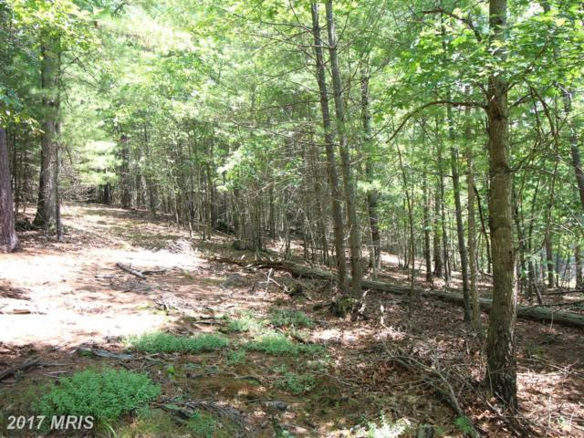 North Mt. Rd., Wardensville, WV 26851 (#HD10011499) :: Pearson Smith Realty