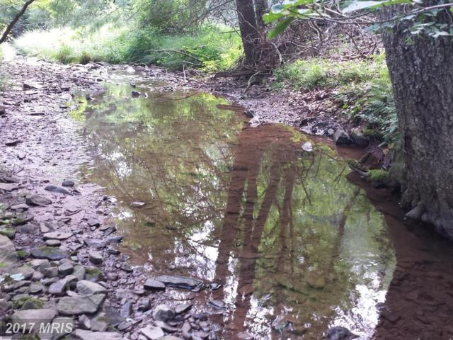 2 Upper Skaggs Run Road, Moorefield, WV 26836 (#HD10013564) :: Pearson Smith Realty