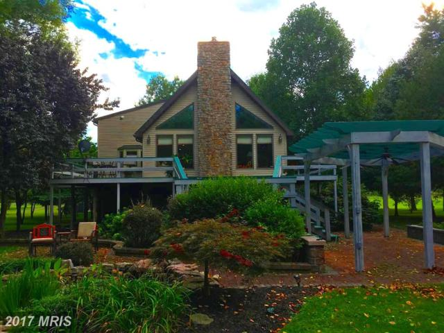390 Silver River Acres Road, Moorefield, WV 26836 (#HD10041786) :: Pearson Smith Realty