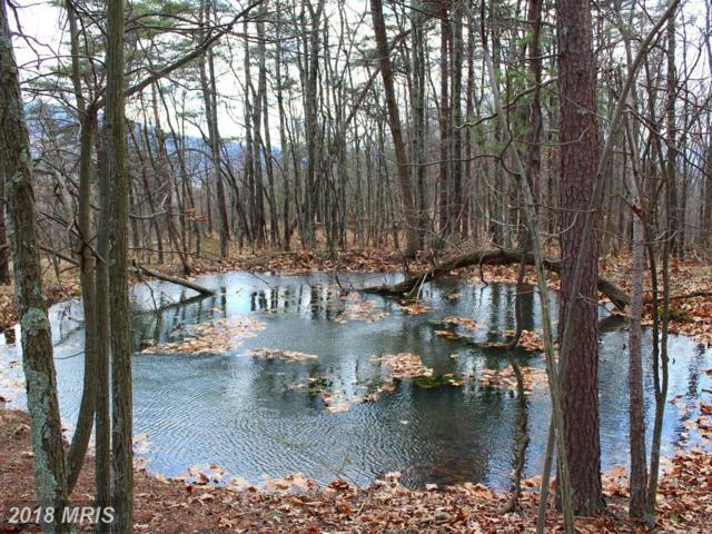 LOT 194 Lockinger Ridge, Moorefield, WV 26836 (#HD10202287) :: Keller Williams Pat Hiban Real Estate Group