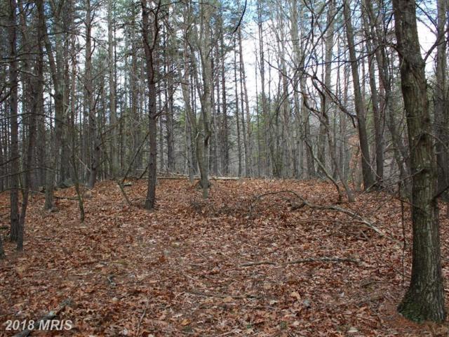 LOT 12 Clifford Hollow, Moorefield, WV 26836 (#HD10202386) :: Keller Williams Pat Hiban Real Estate Group