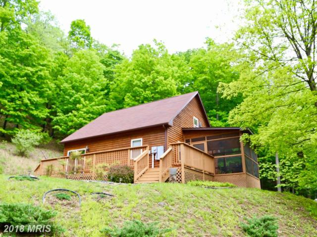553 Warden Lake Ab Drive, Wardensville, WV 26851 (#HD10246720) :: The Maryland Group of Long & Foster