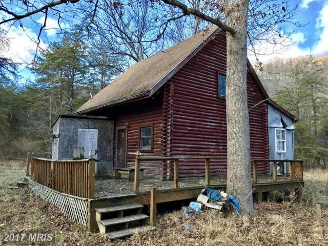 102 Mt Laurel Circle, Lost City, WV 26810 (#HD9866257) :: Pearson Smith Realty