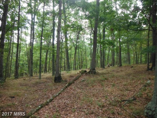27 Trout Pass, Lost City, WV 26810 (#HD9890123) :: Pearson Smith Realty