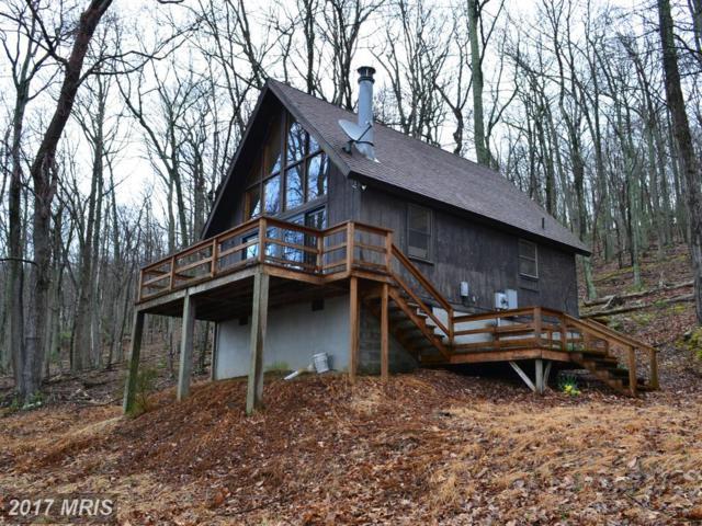 246 Hunter's Ridge, Lost River, WV 26810 (#HD9908521) :: LoCoMusings