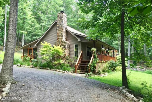 3967 Mill Gap Road, Lost River, WV 26810 (#HD9932867) :: Pearson Smith Realty
