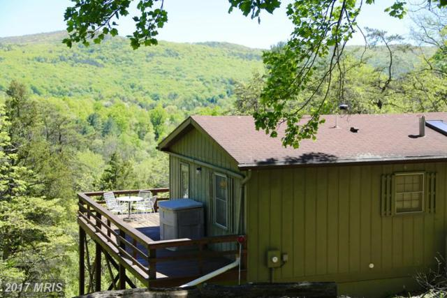 140 Valley View Road, Lost River, WV 26810 (#HD9948590) :: LoCoMusings