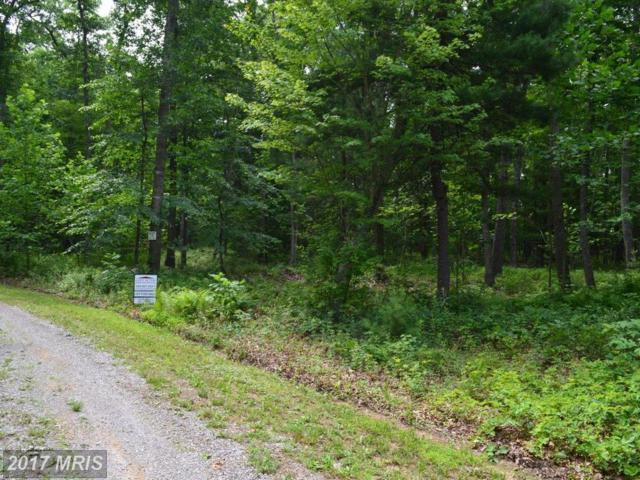 Hardwood Drive, Mathias, WV 26812 (#HD9983219) :: Pearson Smith Realty