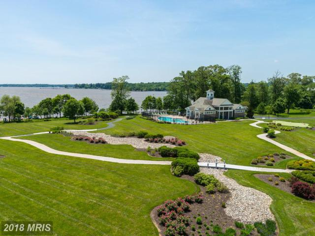 4740 Water Park Drive T, Belcamp, MD 21017 (#HR10249296) :: The Bob & Ronna Group