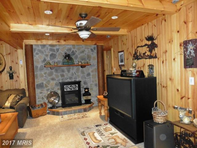300 Linwood Drive, Delray, WV 26714 (#HS10016702) :: Pearson Smith Realty