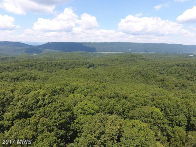 Whitetail Mountain Road, Romney, WV 26757 (#HS10022808) :: Pearson Smith Realty