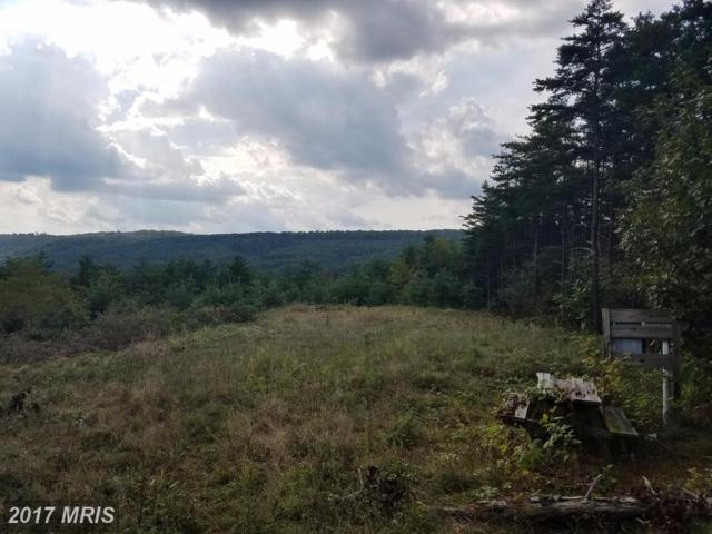 Bluffs Trail, Romney, WV 26757 (#HS10047608) :: Pearson Smith Realty