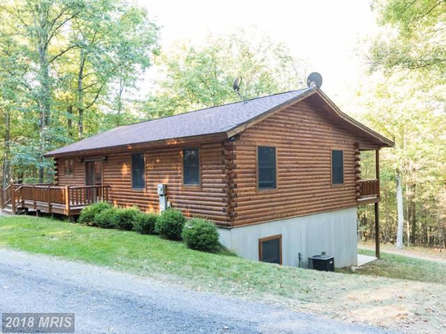 480 High Mountain Road, Romney, WV 26757 (#HS10074771) :: Pearson Smith Realty