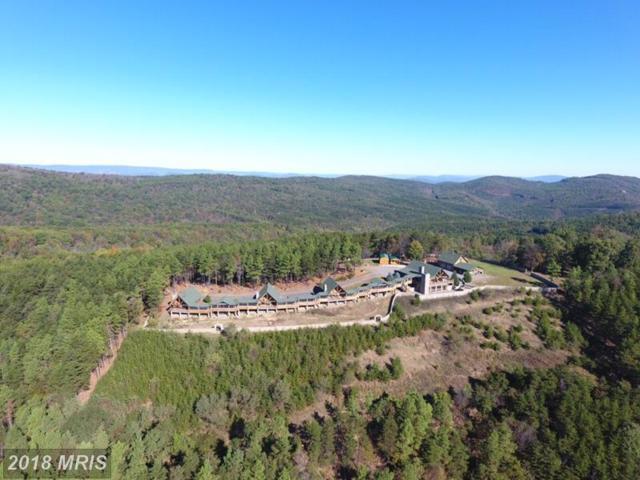 570 Bluffs Potomac Ridge Road, Springfield, WV 26763 (#HS10085367) :: Pearson Smith Realty