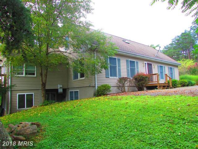 290 White Oak Trail, Paw Paw, WV 25434 (#HS10211543) :: RE/MAX Gateway