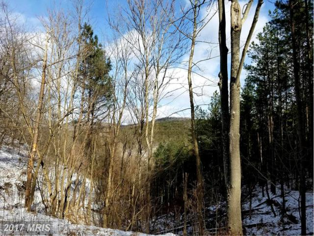 Grace's Cabin Road, Romney, WV 26757 (#HS9844013) :: Pearson Smith Realty
