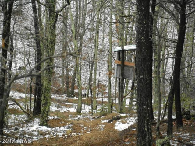 Mockingbird Lane, Romney, WV 26757 (#HS9846978) :: Pearson Smith Realty