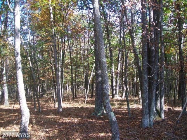 Noland Road, Slanesville, WV 25444 (#HS9877806) :: Pearson Smith Realty