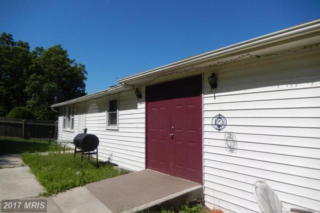 29 0 29 SOUTH P.O.BOX457,, Augusta, WV 26704 (#HS9885398) :: LoCoMusings