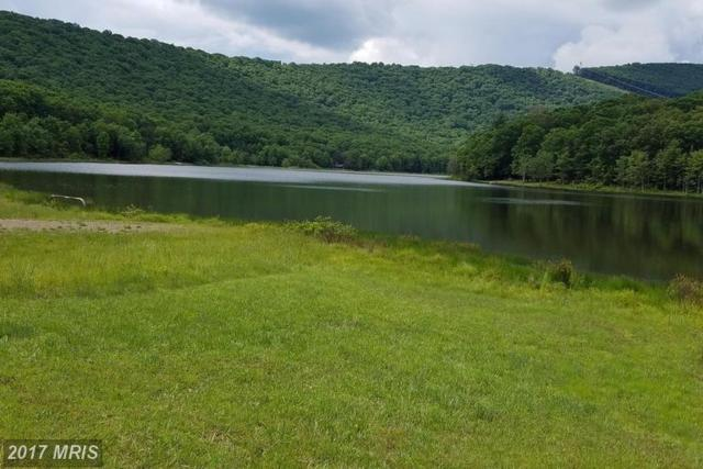 Lake Ferndale Drive, Springfield, WV 26763 (#HS9887908) :: Pearson Smith Realty