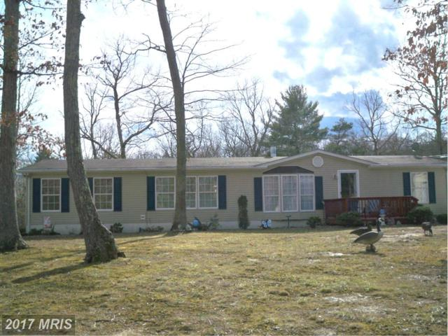 158 West Crescent Drive W, Delray, WV 26714 (#HS9899669) :: Pearson Smith Realty