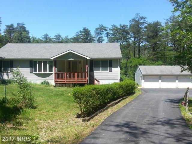60 Raven Rocks Road, Springfield, WV 26763 (#HS9904744) :: Pearson Smith Realty