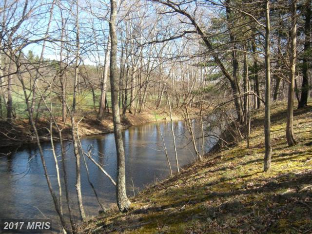 LOT #46 Riverwood Trail Trail, Augusta, WV 26704 (#HS9917998) :: Pearson Smith Realty