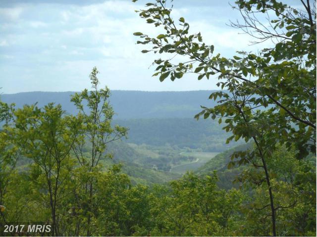 Bluffs Bluebird Trail, Springfield, WV 26763 (#HS9933089) :: Pearson Smith Realty