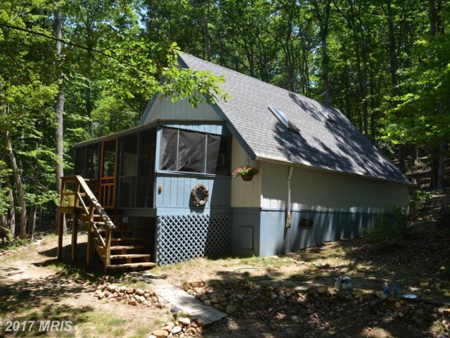 194 Hoover Young Drive, Capon Bridge, WV 26711 (#HS9977841) :: Pearson Smith Realty