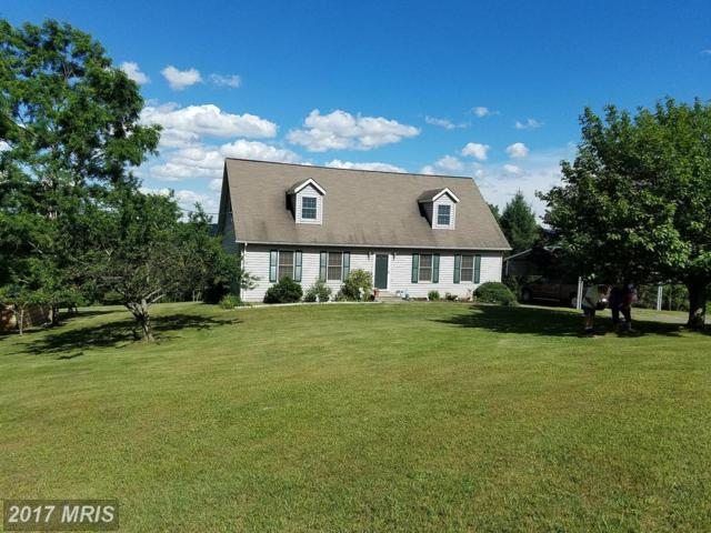 363 Piney Mtn Road, Romney, WV 26757 (#HS9983701) :: Pearson Smith Realty
