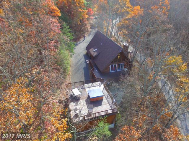 2157 Timberlake Drive, James Creek, PA 16657 (#HU9885752) :: LoCoMusings