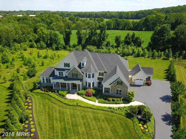 5227 Sweet Meadow Lane, Clarksville, MD 21029 (#HW10049281) :: Keller Williams Pat Hiban Real Estate Group