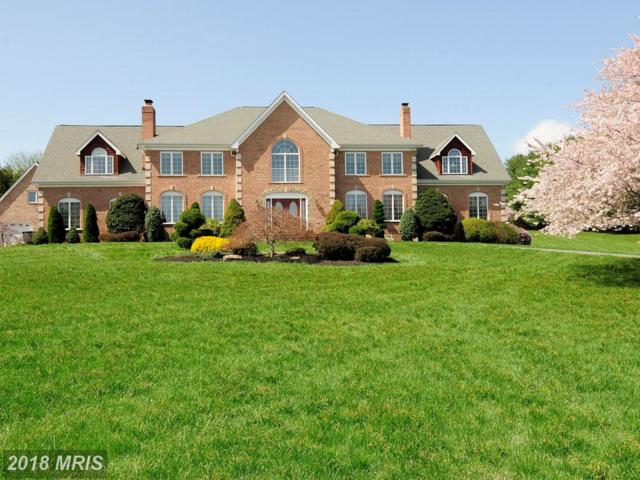 5919 Clifton Oaks Drive, Clarksville, MD 21029 (#HW10080639) :: Pearson Smith Realty