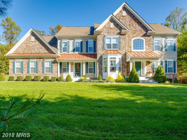 12118 Frederick Road, Ellicott City, MD 21042 (#HW10086318) :: The Gus Anthony Team