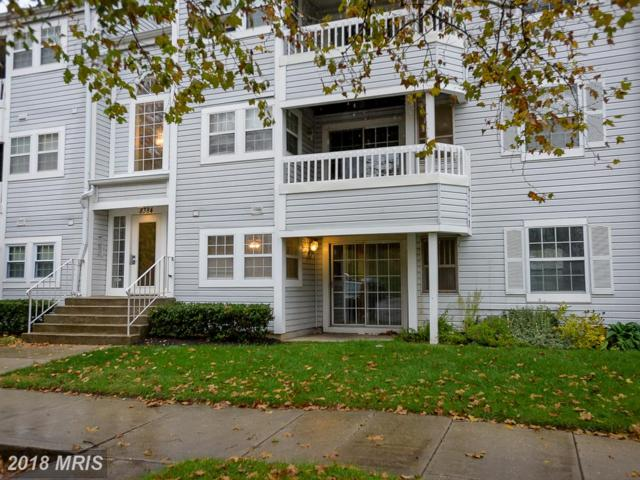 8384 Montgomery Run Road D, Ellicott City, MD 21043 (#HW10100466) :: Pearson Smith Realty
