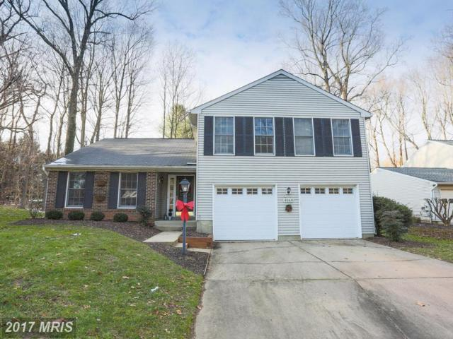 4049 Firefly Way, Ellicott City, MD 21042 (#HW10119307) :: The Sebeck Team of RE/MAX Preferred