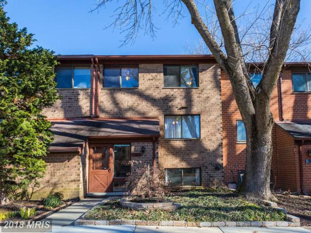 7167 Winter Rose Path, Columbia, MD 21045 (#HW10120654) :: Pearson Smith Realty