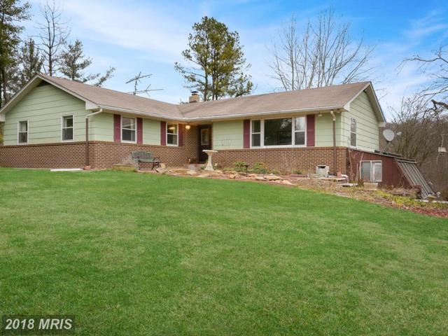 15720 Union Chapel Road, Woodbine, MD 21797 (#HW10194369) :: Charis Realty Group