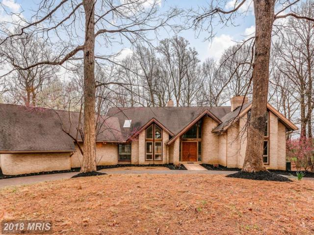 4219 Buckskin Lake Drive, Ellicott City, MD 21042 (#HW10197223) :: Keller Williams Pat Hiban Real Estate Group