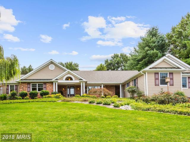 6694 Luster Drive, Highland, MD 20777 (#HW10198504) :: Advance Realty Bel Air, Inc
