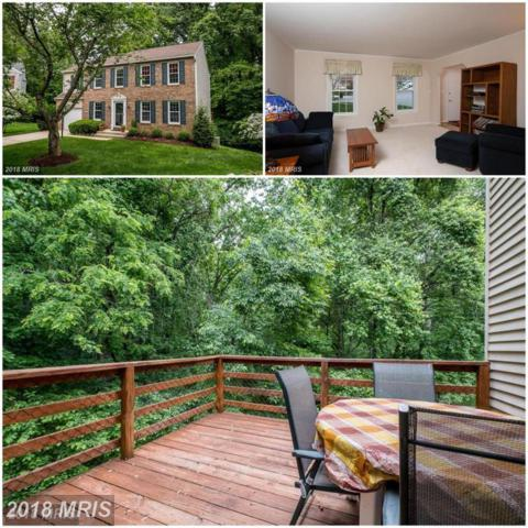 6119 Minute Hand Court, Columbia, MD 21044 (#HW10212022) :: Bob Lucido Team of Keller Williams Integrity