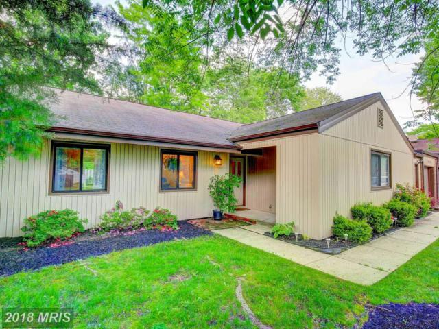 5420 Storm Drift, Columbia, MD 21045 (#HW10246064) :: Wes Peters Group